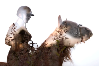 Double exposure of rider and horse