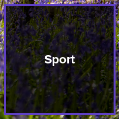 photography_sports